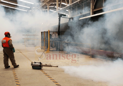 fumigacion desinsectacion control de plagas nebulizacion-caliente-igeba-tf34-swingfog-saniseg