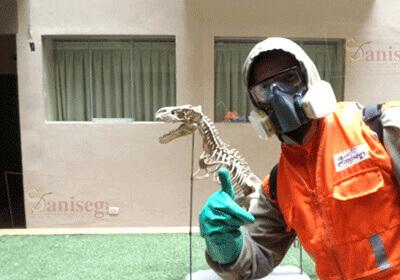 personal de fumigacion limpieza de cisternas