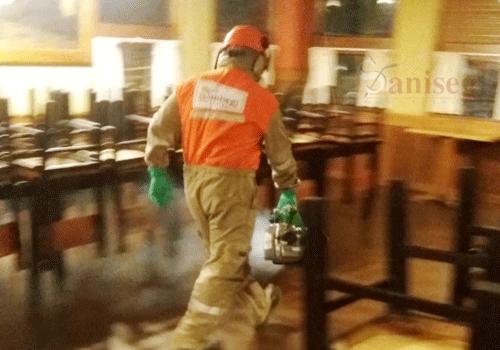 Fumigacion de restaurantes contra moscas y cucarachas saniseg lima