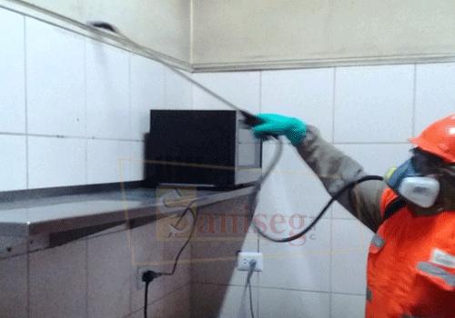 fumigacion desinsectacion cucarachas pulverizacion insecticida saniseg