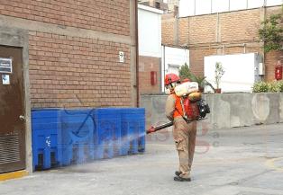 Control de plagas Fumigacion desinsectacion contra insectos y todo tipo de plagas